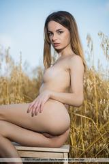 Denisa G