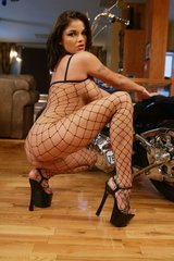 Hot Babes in Fishnet